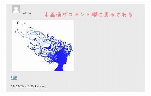 comment-plugin04a