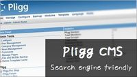 pligg-seo-customize00