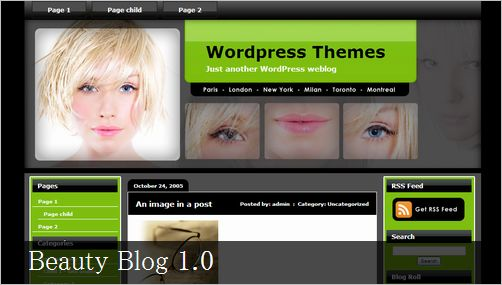 wordpress_themes09