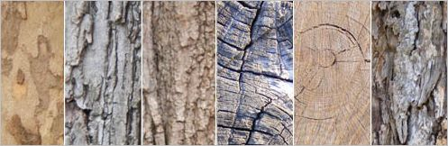 wood-texture01