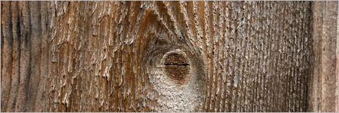 wood-texture03
