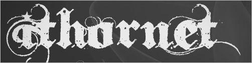 free-fonts05