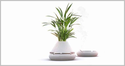 plant-pot03