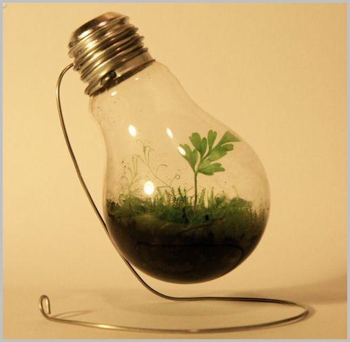 plant-pot04