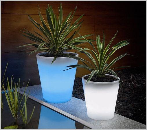 plant-pot05
