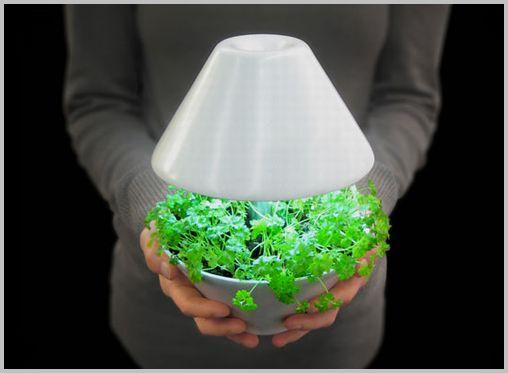 plant-pot07