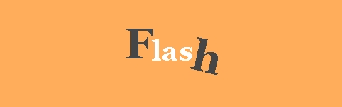seo/flash