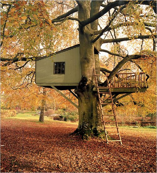 tree-house02