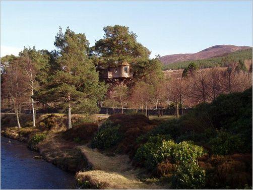 tree-house07