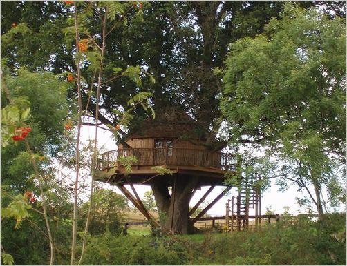 tree-house10