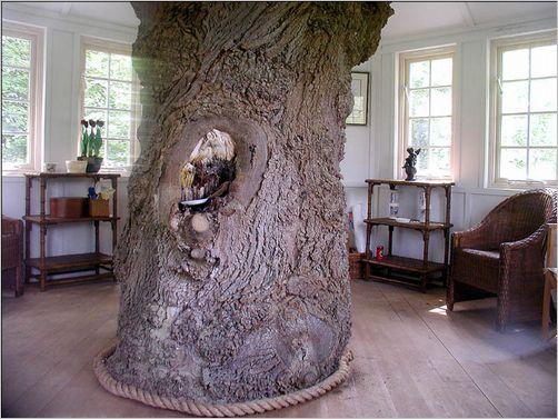 tree-house11