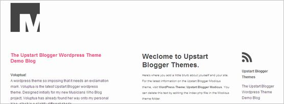 wordpress-mini-themes08