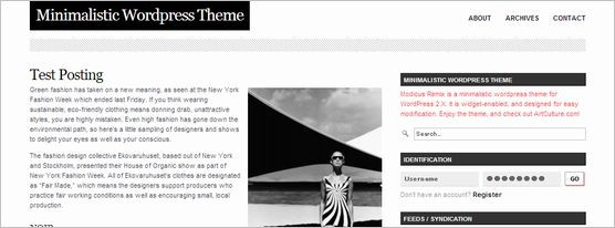 wordpress-mini-themes09