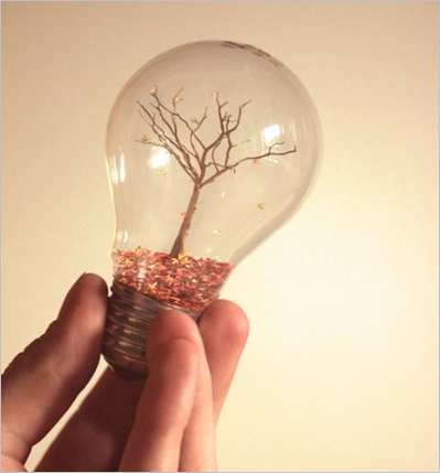 bulb08