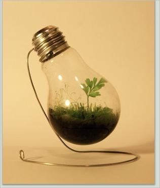 bulb10