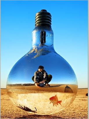 bulb12