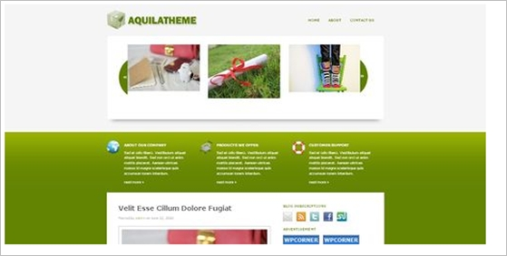 free-wordpress-themes45